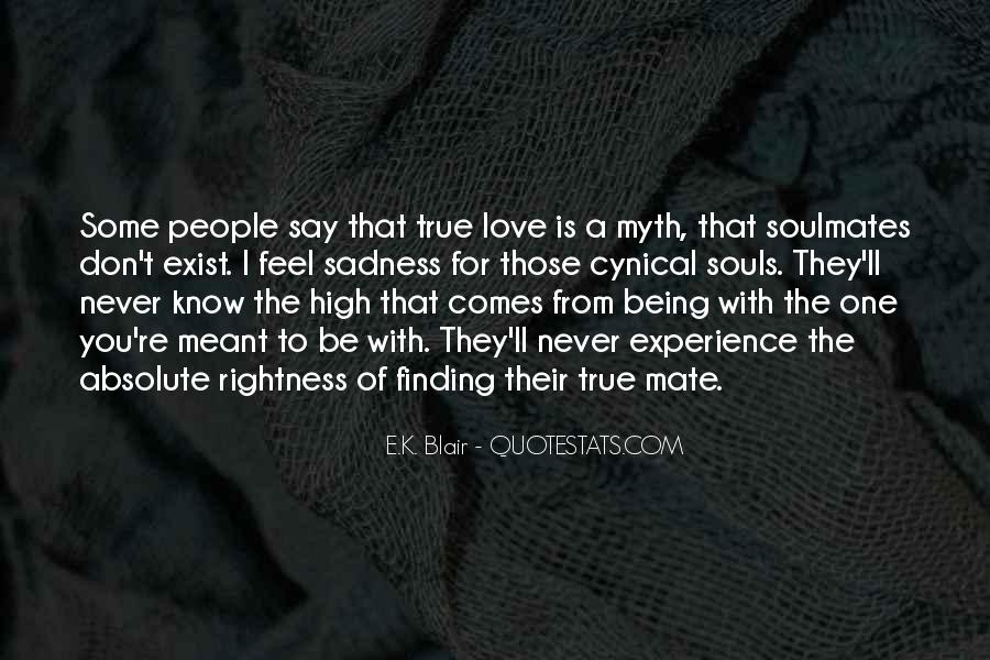 Quotes About Being Soulmates #1667901