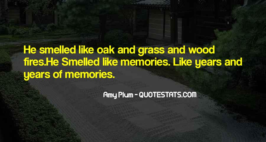 Quotes About Memories From The Wonder Years #122340
