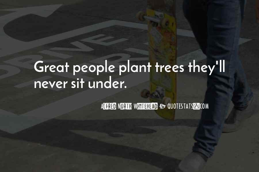 Quotes About Trees And Wisdom #229272