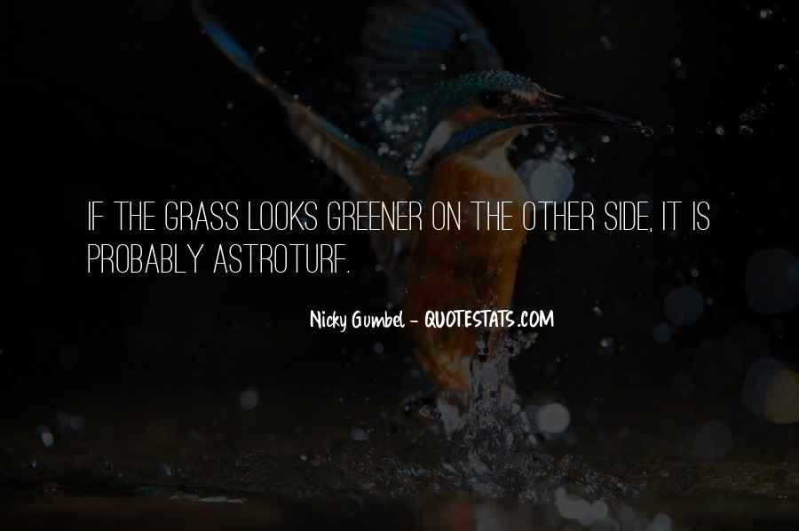 Quotes About Passing Through The Storm #930455