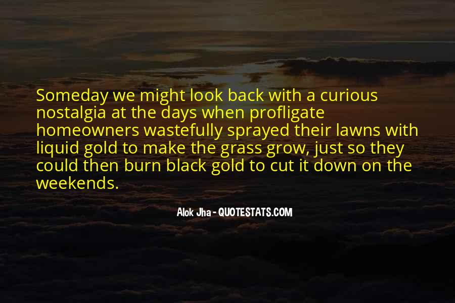 Quotes About Lawns #1040379