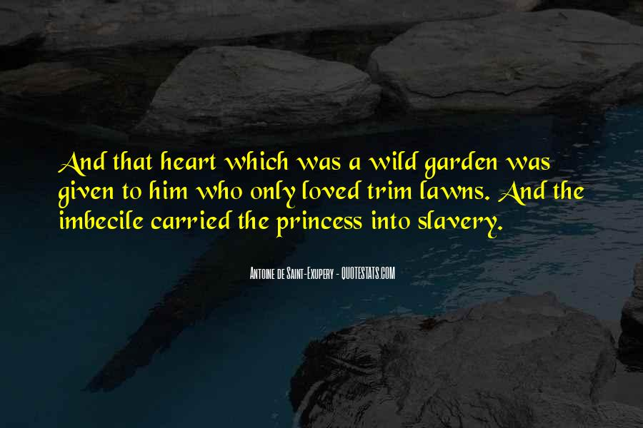 Quotes About Lawns #391063
