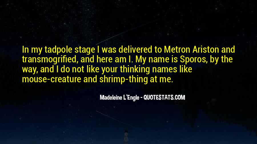 Quotes About My Name #4536