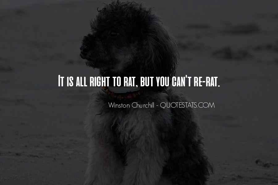 Quotes About Rats #77228