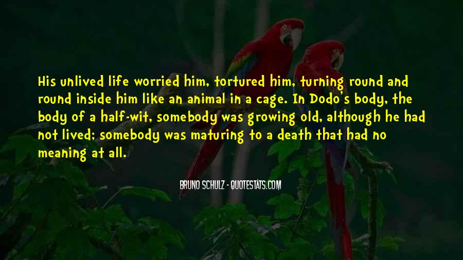 Quotes About Dodo #1722593