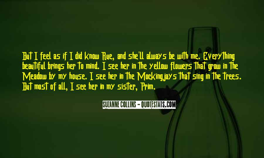 Quotes About Katniss Everdeen In Catching Fire #1121001