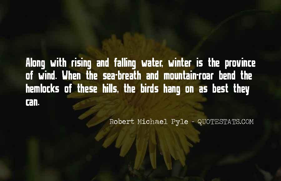 Quotes About Rising And Falling #125945