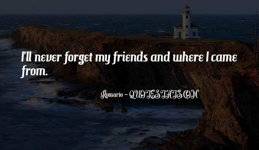 Quotes About Friends You Will Never Forget #1756423