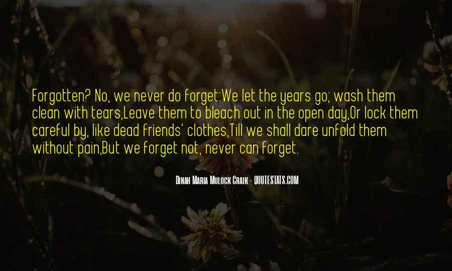 Quotes About Friends You Will Never Forget #564470