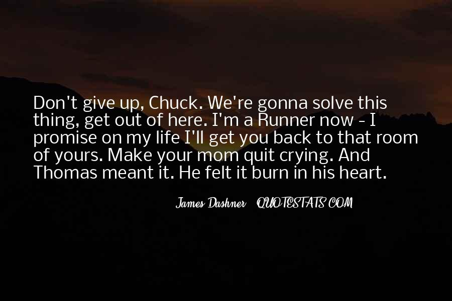 Quotes About Don't Give Up #34543
