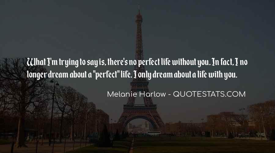 Quotes About Your Perfect Relationship #927723