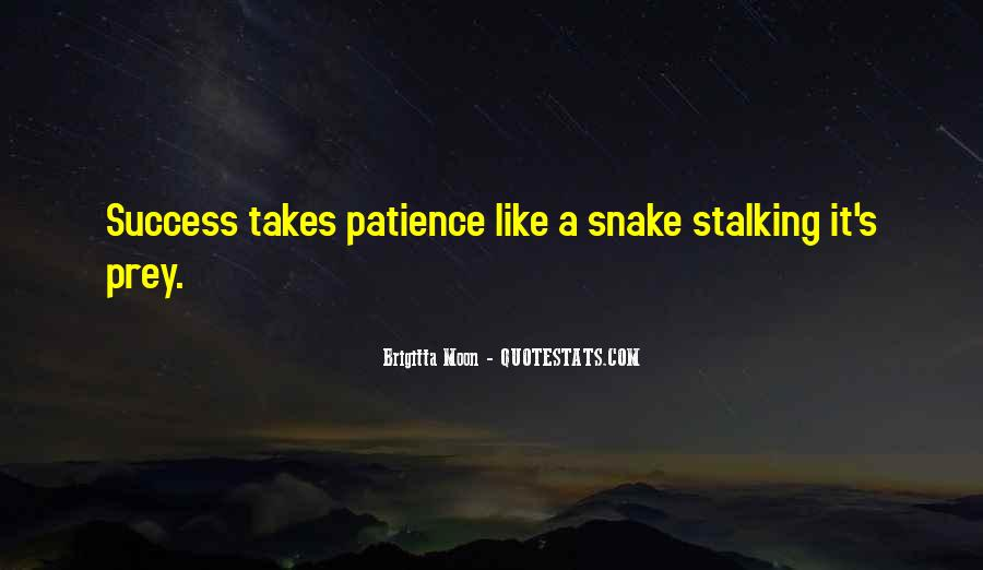 Quotes About Stalking Someone #145140