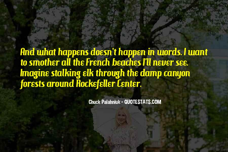 Quotes About Stalking Someone #152600