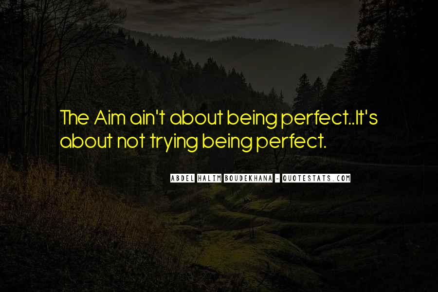 Quotes About About Not Being Perfect #1138150