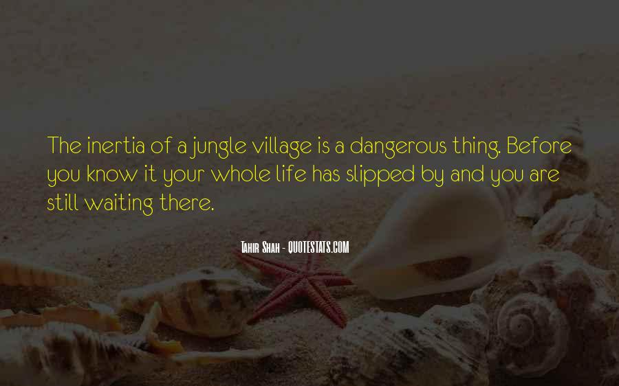 Quotes About A Village #211163