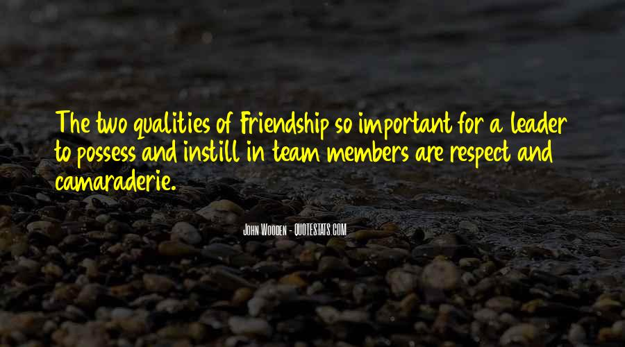 Quotes About Team And Friendship #1554339
