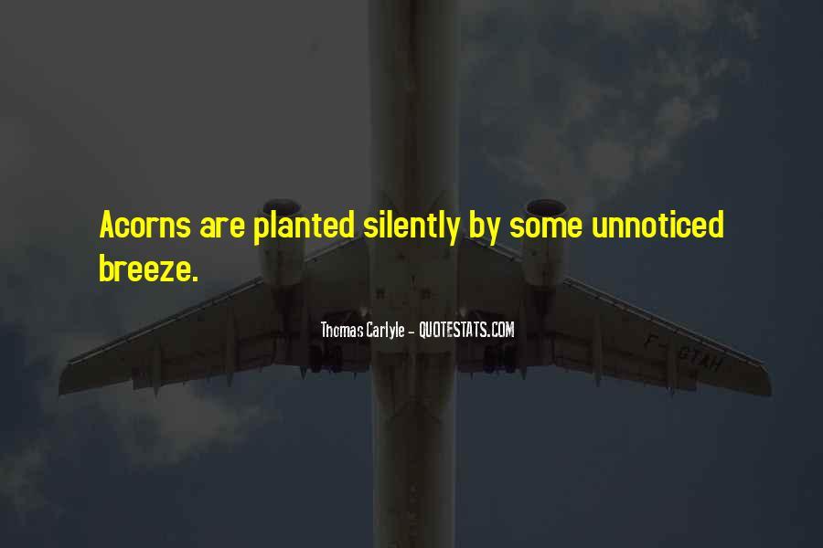 Quotes About Acorns #1684005