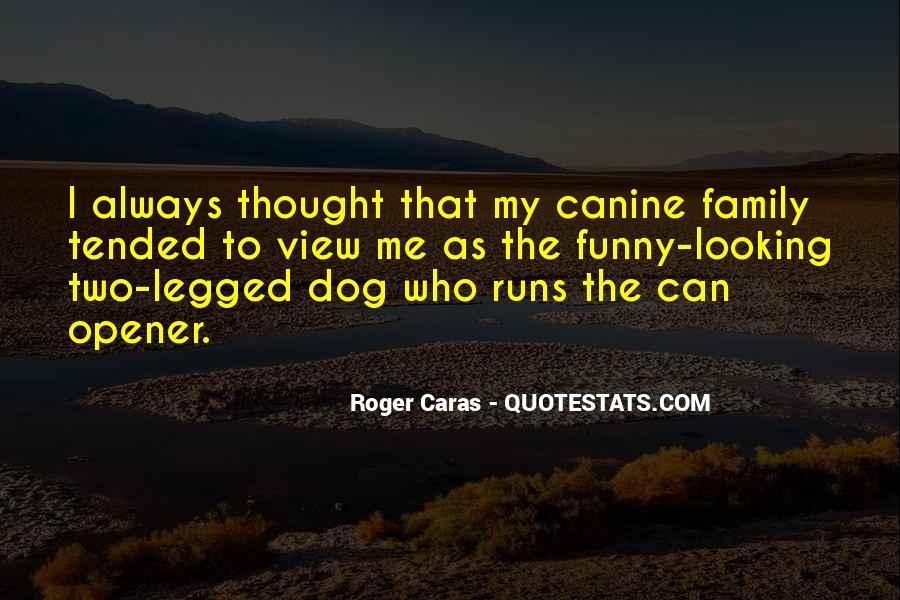 Quotes About Canine #1465147