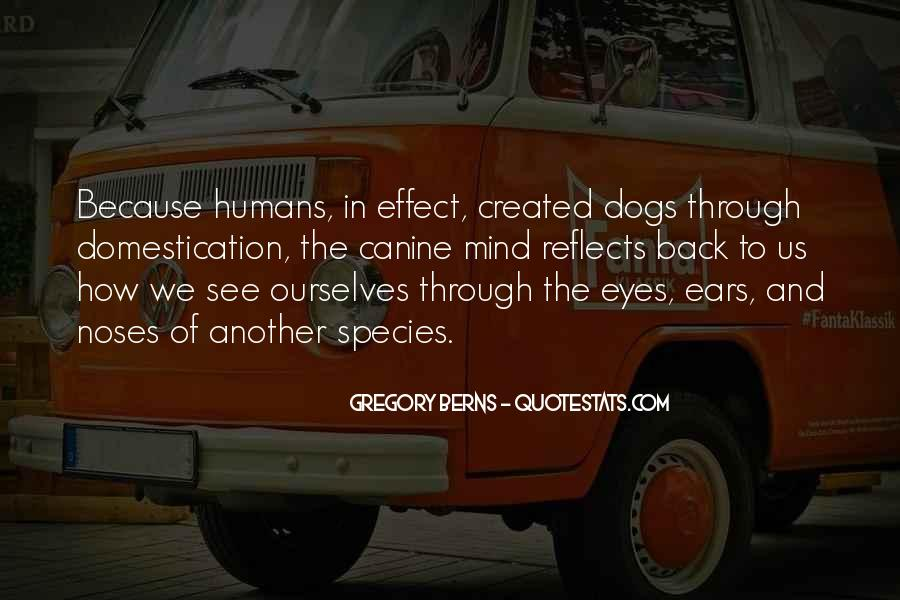 Quotes About Canine #724110