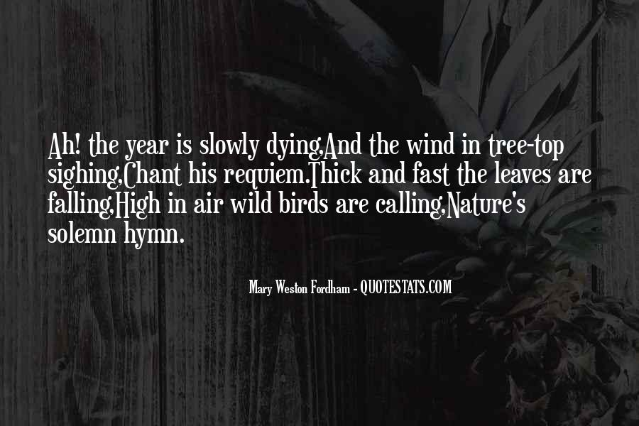 Quotes About Fall Leaves #246259