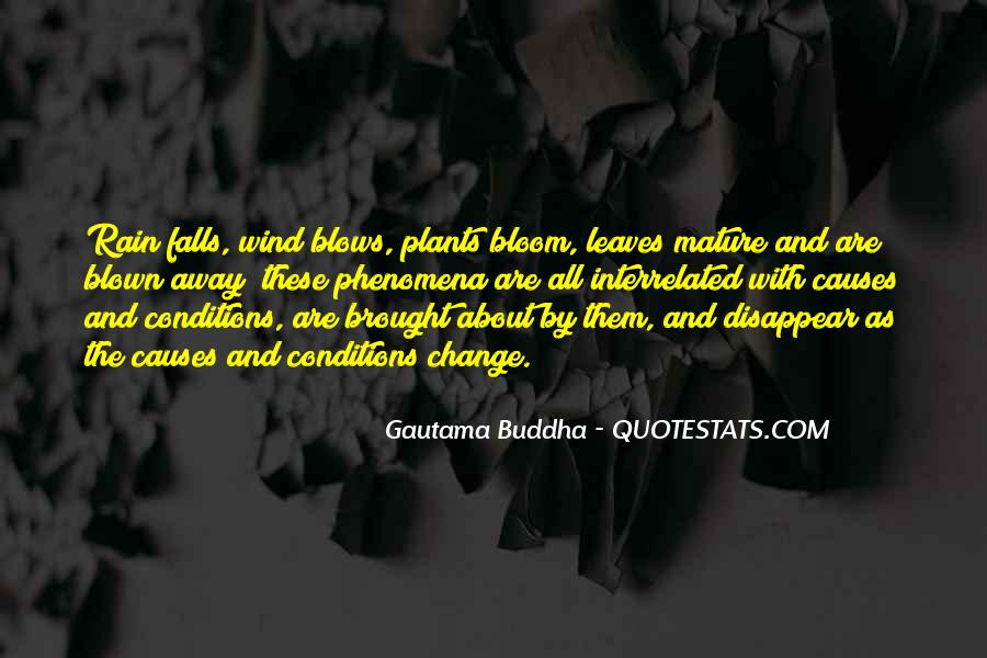 Quotes About Fall Leaves #373366