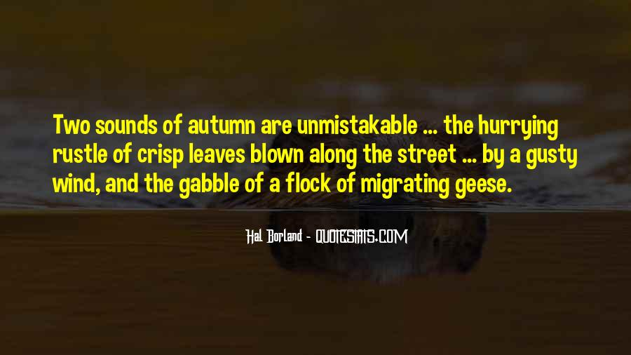 Quotes About Fall Leaves #710538