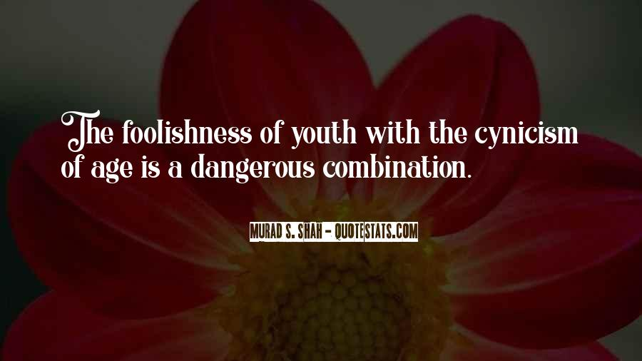 Quotes About Foolishness Of Youth #553432