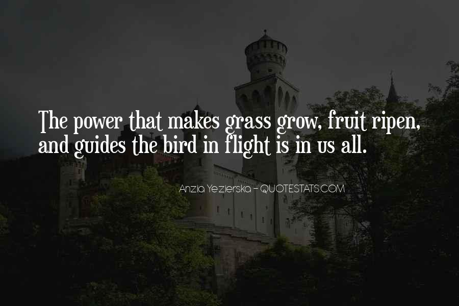 Quotes About Flight #130974