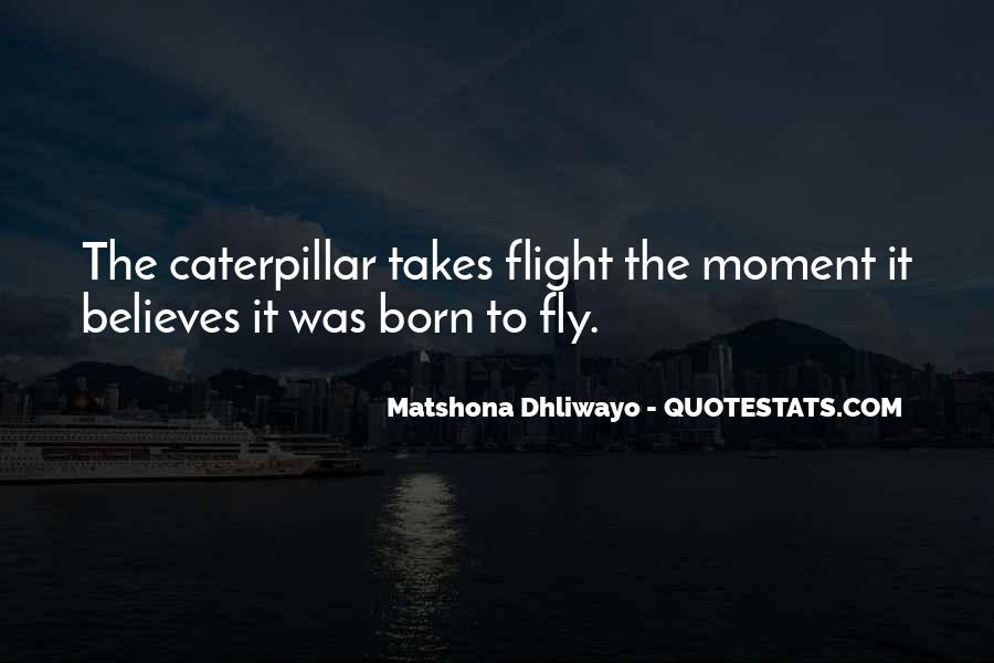 Quotes About Flight #23612