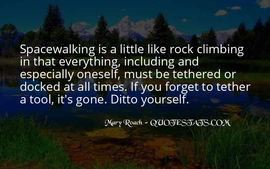 Quotes About Rock Climbing #30398