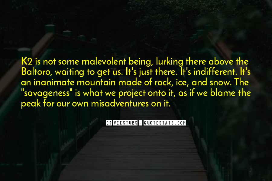 Quotes About Rock Climbing #897377