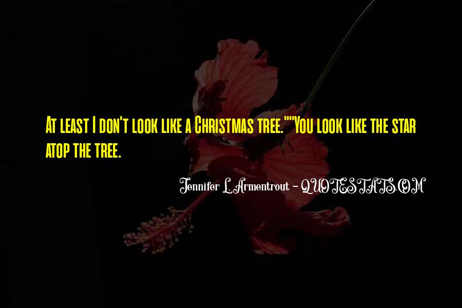Quotes About The Christmas Star #1698470