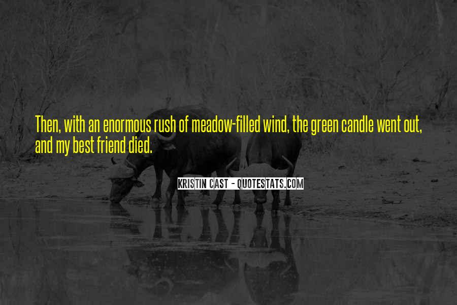 Quotes About A Friend Who Died #1244248