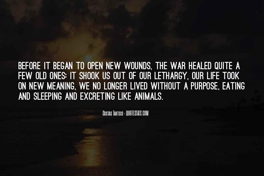 Quotes About Meaning And Purpose Of Life #258842