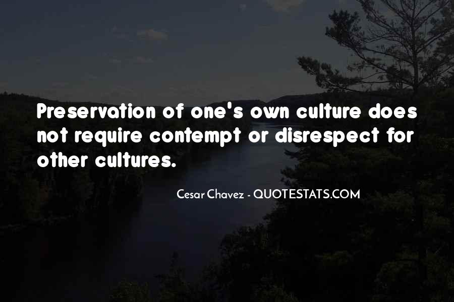 Quotes About Other Cultures #843225