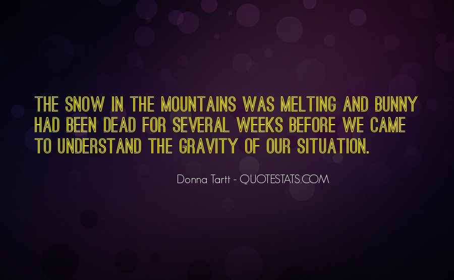 Quotes About The Mountains And Snow #53892
