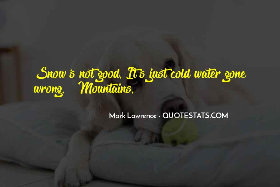 Quotes About The Mountains And Snow #902364