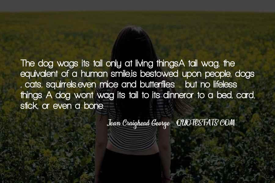 Quotes About Wags #1534303