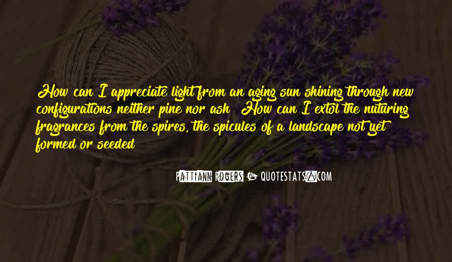 Quotes About Sun Shining Through #709198