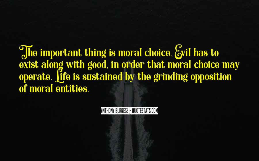Quotes About The Choice Between Good And Evil #1065310