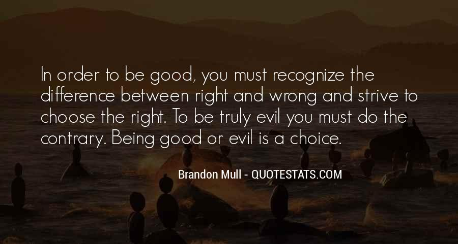 Quotes About The Choice Between Good And Evil #624813
