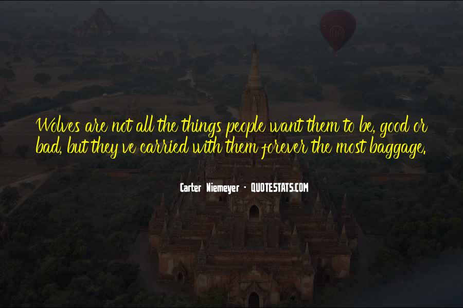 Quotes About The Things They Carried #1217457