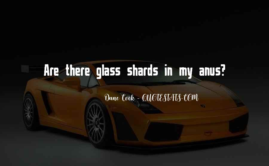 Quotes About Shards Of Glass #184391