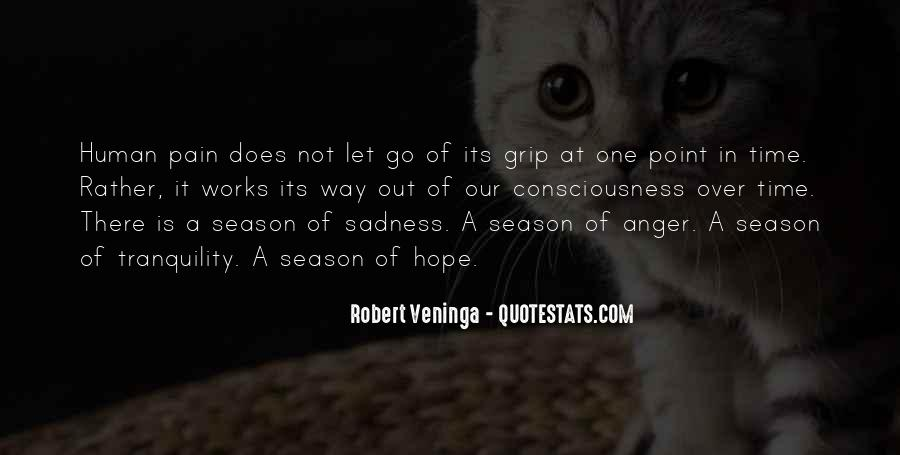 Quotes About Letting Go Of Anger And Pain #1764473