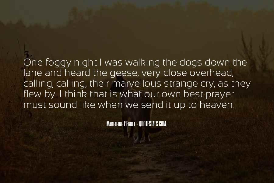 Quotes About Heaven And Dogs #229514