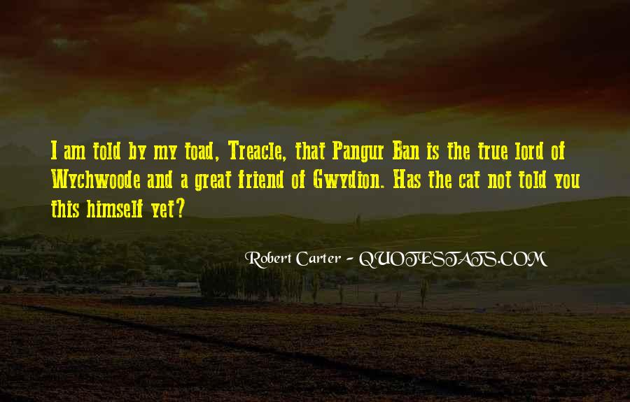 Quotes About A True Friend #443066