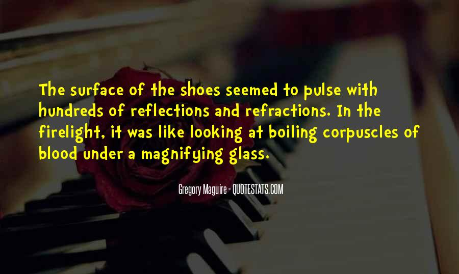 Quotes About The Looking Glass #1012199