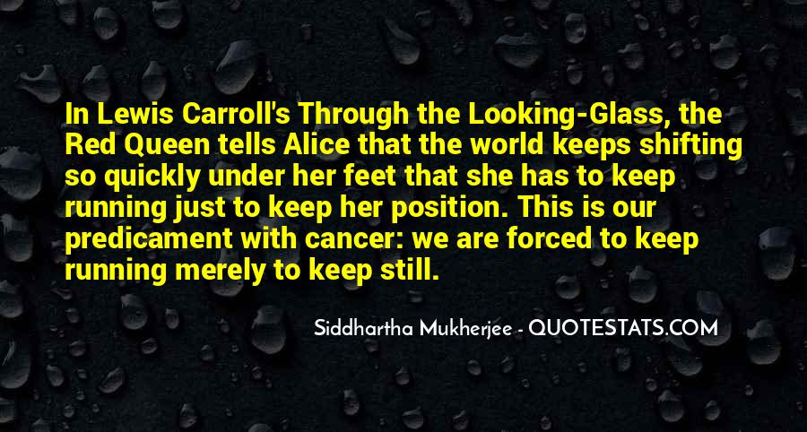 Quotes About The Looking Glass #247779