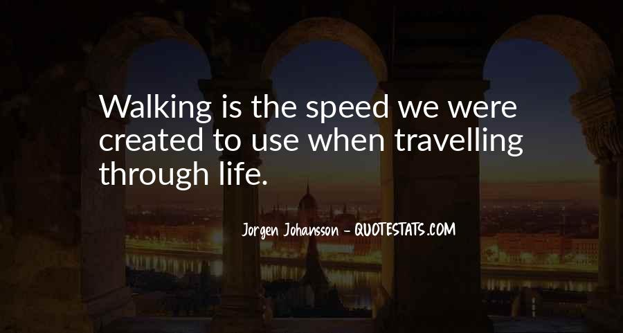 Quotes About Travelling Life #876655
