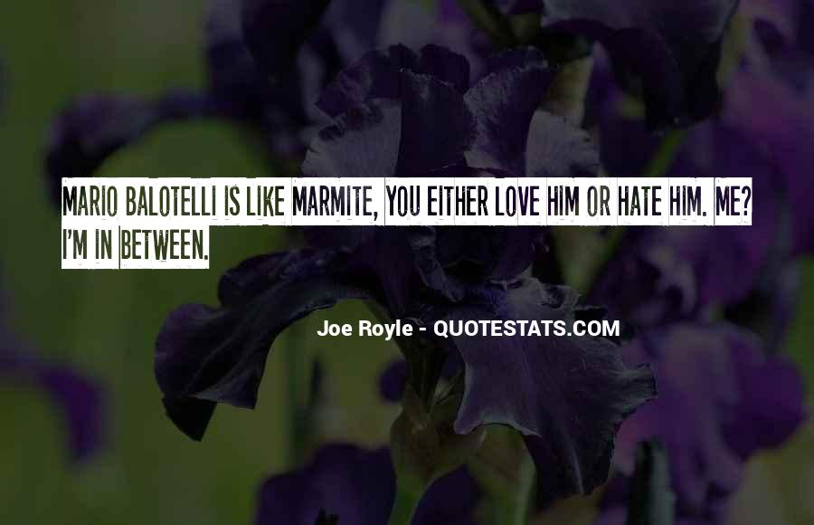 Quotes About Love Me Or Hate Me #584200